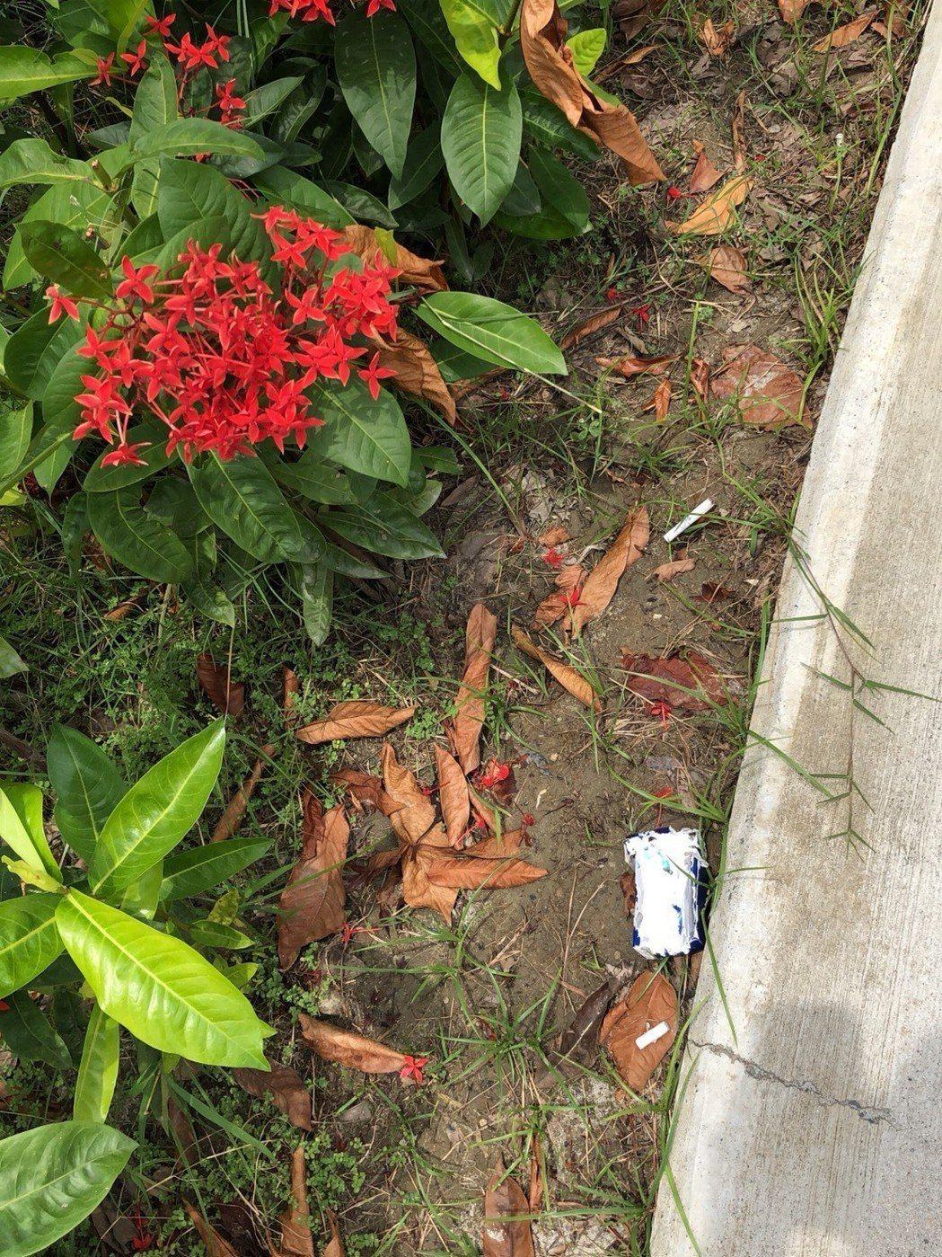 高雄馬卡道附近綠地公園維護不力,垃圾、煙蒂隨處可見,房價吃悶虧。