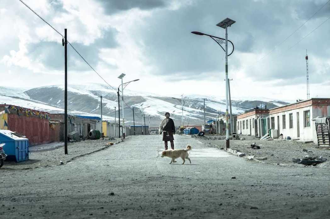 「撞死一隻羊」入圍威尼斯影展地平線單元。圖/澤東提供
