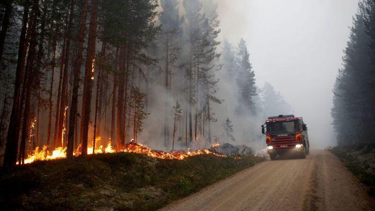 瑞典面臨百年來的最高溫, 一處林火沿著道路燃燒。 (翻攝自網路)
