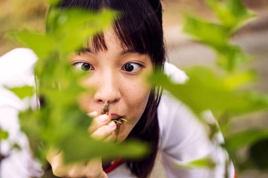 王渝萱為戲吃蟲。圖/公視提供