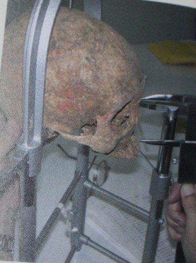 清大考古團隊測量清朝頭蓋骨。 記者張雅婷/翻攝