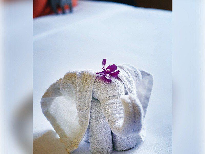 房務人員巧思的大象折巾讓人驚喜。 攝影/行遍天下