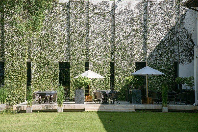 早餐就在綠意與陽光下展開吧。 攝影/行遍天下
