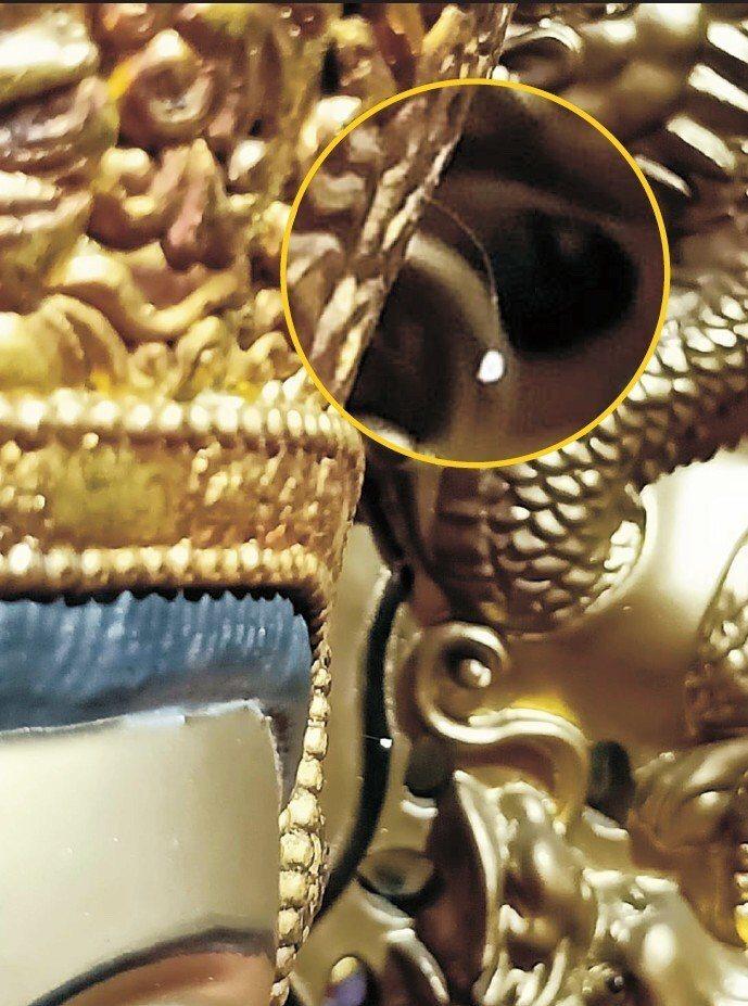 陀彌天紫竹林寺/提供 佛經中記載3000年一開的優曇婆羅花,於新店「陀彌天紫竹林...