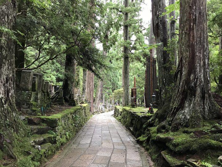 綿延兩公里的墓園,終點就是御廟。 圖/背包客棧
