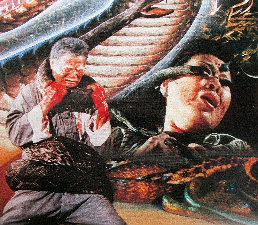 「人蛇大戰」充滿刺激、恐怖的畫面。圖/摘自HKMDB