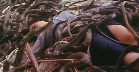 台灣電影經過幾次低潮,今日不少觀眾很難想像台灣影壇曾經也有欣欣向榮、類型片百花齊放的年代,某些3、40年前拍得出來的影片,在現今的台灣已經不太可能出現,就像是許多影迷童年時曾經被嚇得夜夜惡夢的「人蛇...