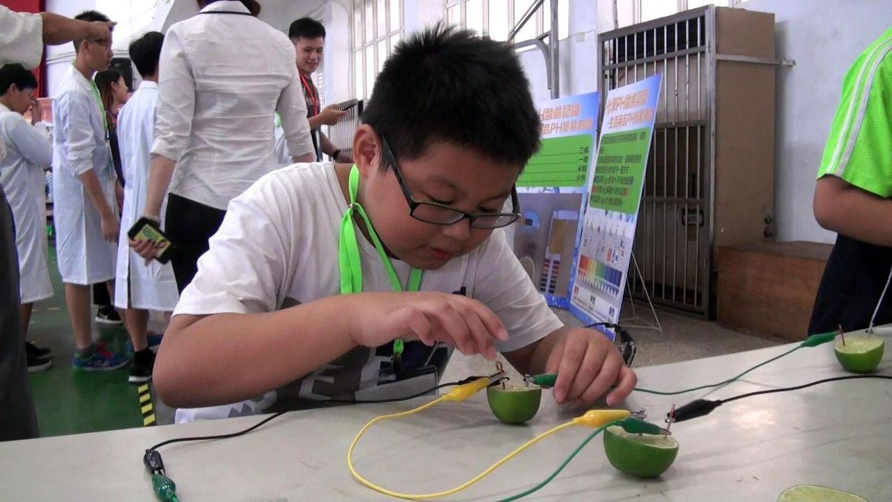 參加台塑科學夏令營的小朋友,實地探索檸檬到底能不能發電。記者王昭月/攝影