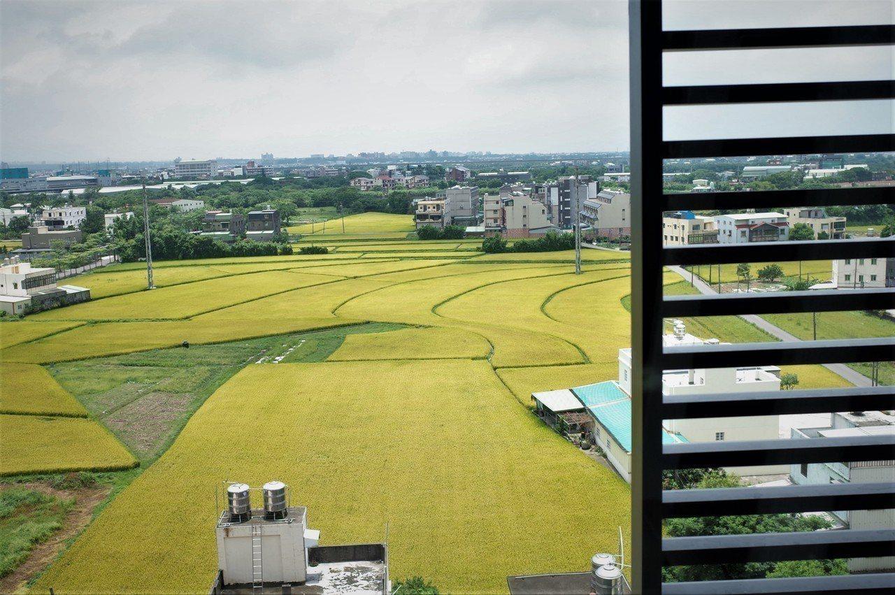 萬能科大「信義樓」學生宿舍可以看見中壢綠油油的稻田。記者鄭國樑/攝影