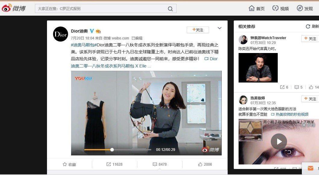 Dior大陸官方微博置放的「Dior迪奧二○一八秋冬成衣系列馬鞍包 X Elle...