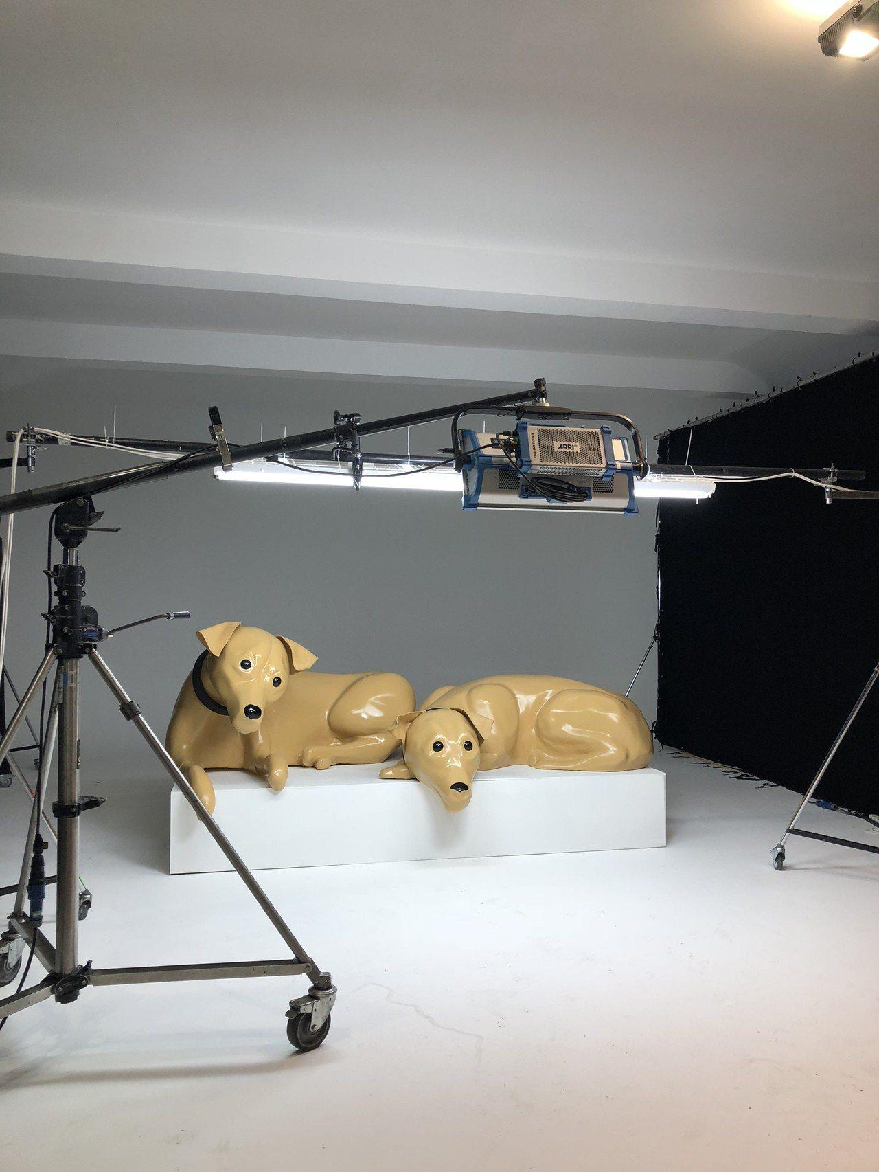 Kim Jones的愛犬Dexter和Lulu,也會在這系列的視覺形象中出現。圖...