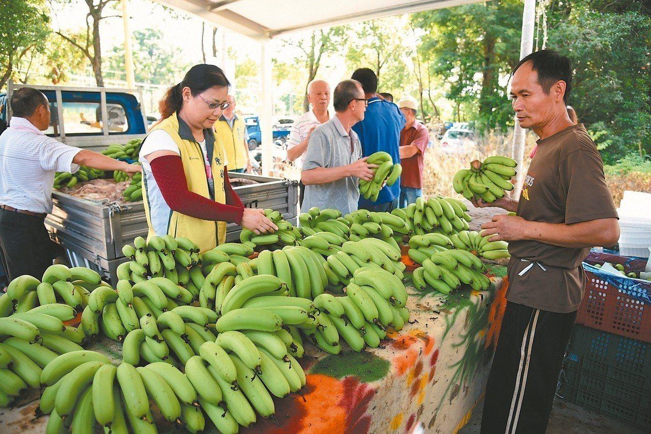 南投縣集集綠色隧道耀宗橋旁成立香蕉集貨場,固定周三收貨,也舉辦農產品行銷市集。 ...