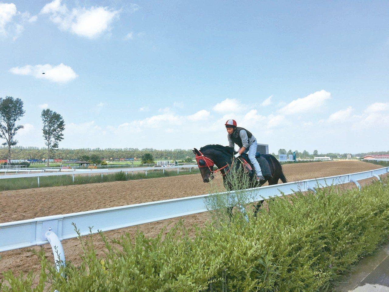 玉龍馬園,擁有大陸一流的賽馬場。 記者汪莉絹/攝影