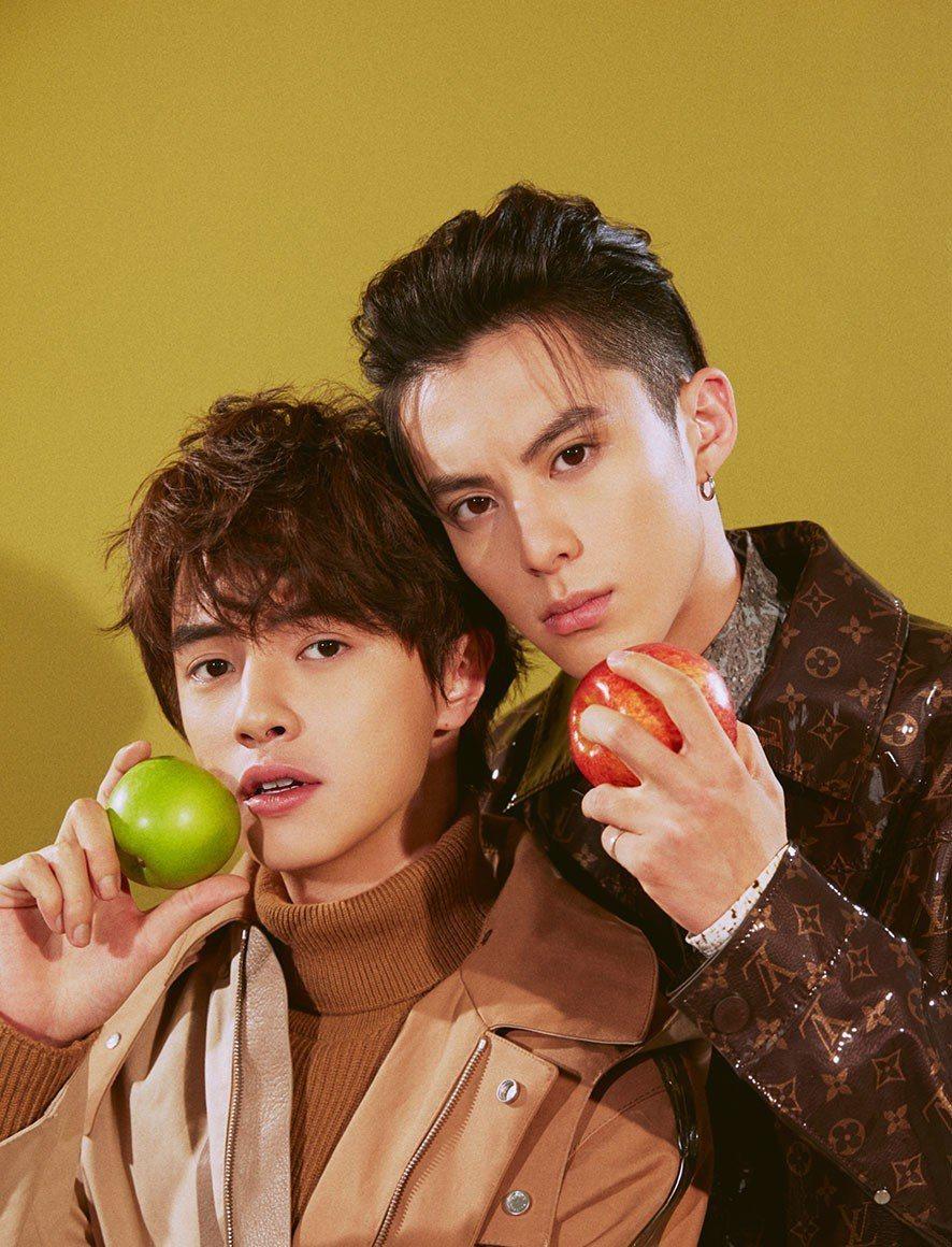 王鶴棣(右)、官鴻在新版「流星花園」中是情敵,戲外喜歡類型則不同。圖/Bella
