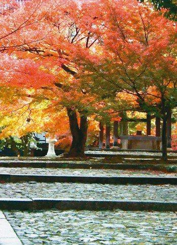 真如堂是日本觀賞紅葉的知名勝地。 圖/有行旅提供
