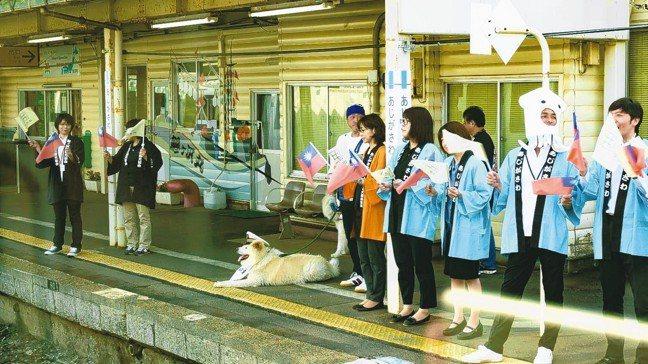 鰺澤町的觀光站長秋田犬Wasao。 圖/梁旅珠