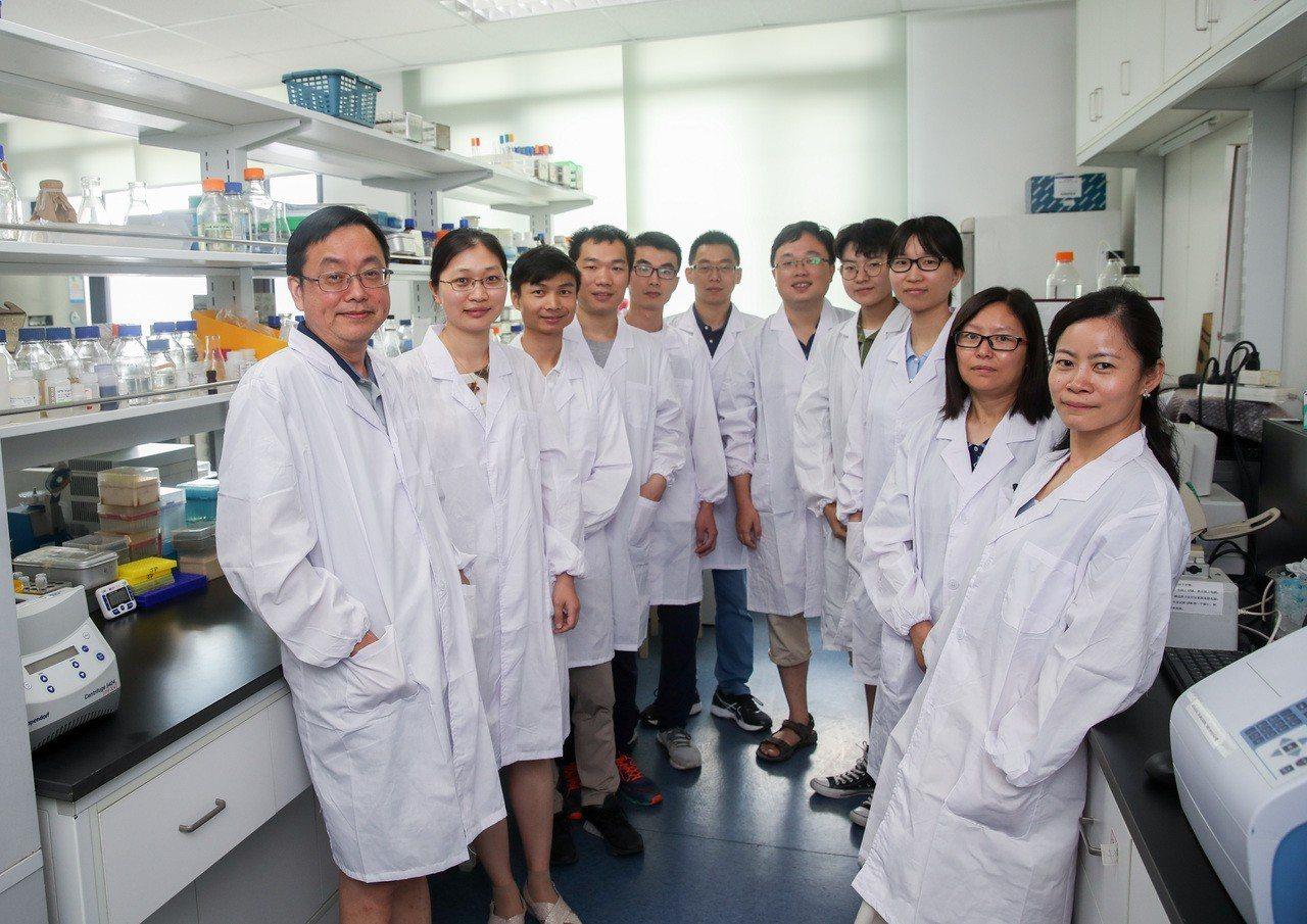中國科學家歷經四年攻關,在「人造生命」獲得重大突破。 新華社