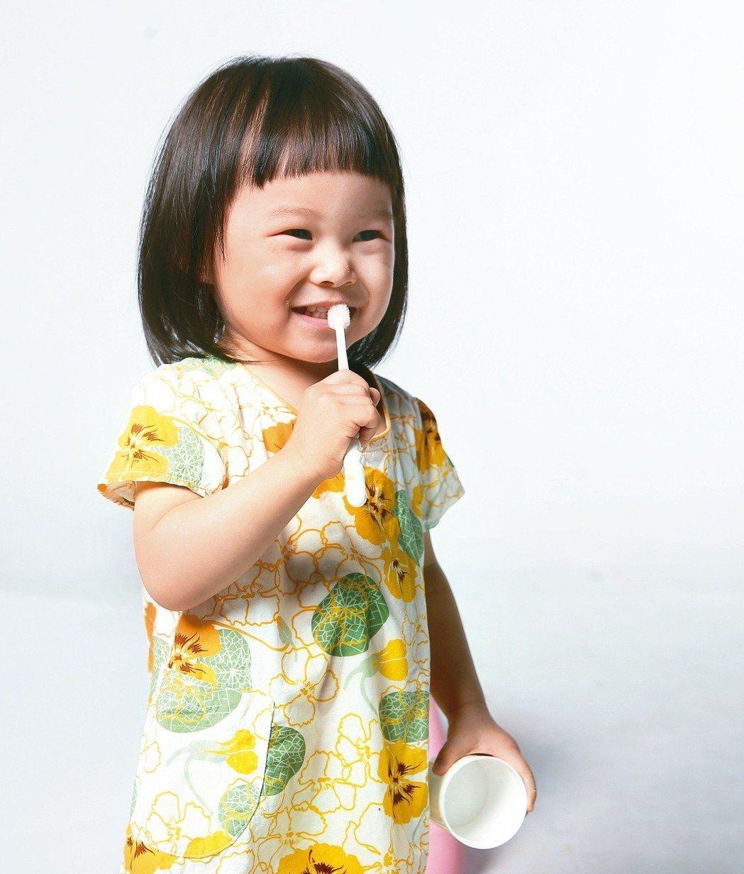 孩子一長牙就可刷牙,建議選擇小頭、軟毛牙刷,兩顆、兩顆慢慢刷。 圖/聯合報系資料...