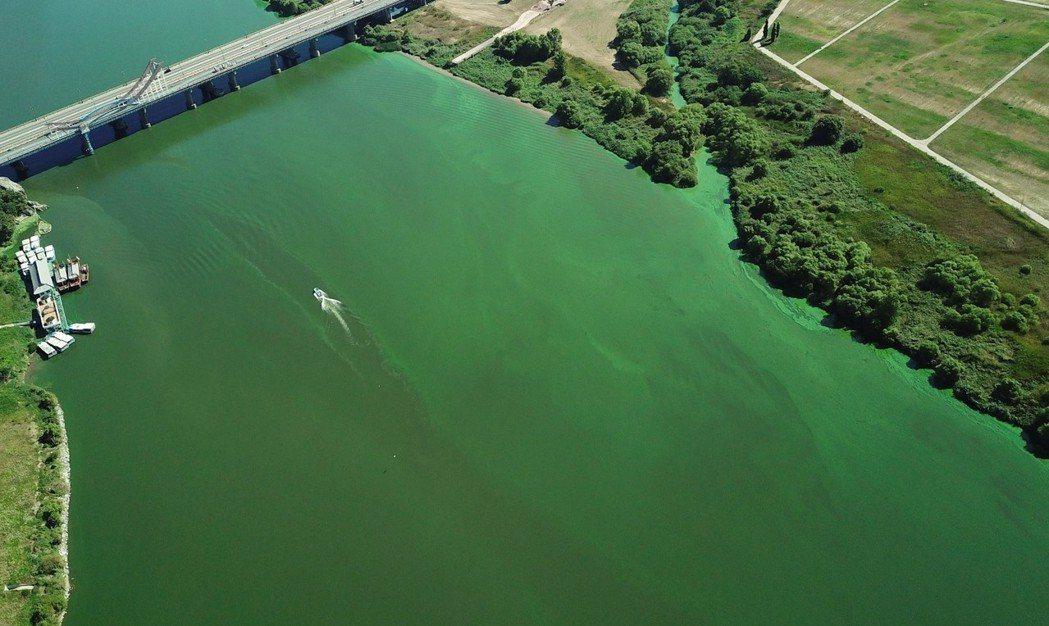 異常而連續的夏日高溫,對自然生態也造成了威脅。圖為南韓西部忠清南道扶餘郡的河川,...