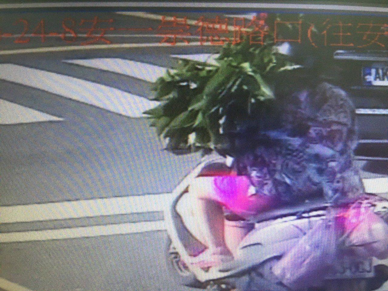 樹葉整個都遮蔽婦人的臉龐,員警調出監視器發現也覺得誇張,嘆有如「抓到寶可夢椰子樹...