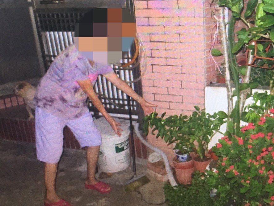 警方在游婦住家門口發現遭竊玉蘭花及辣椒花各一盆。圖/警方提供