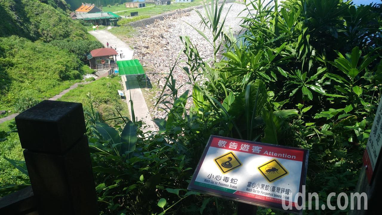 龜山島401高地毒蛇多,務必留意。記者楊德宜/攝影