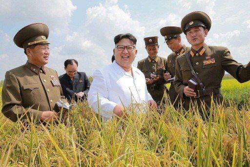 北韓領導人金正恩(中)。 (路透)