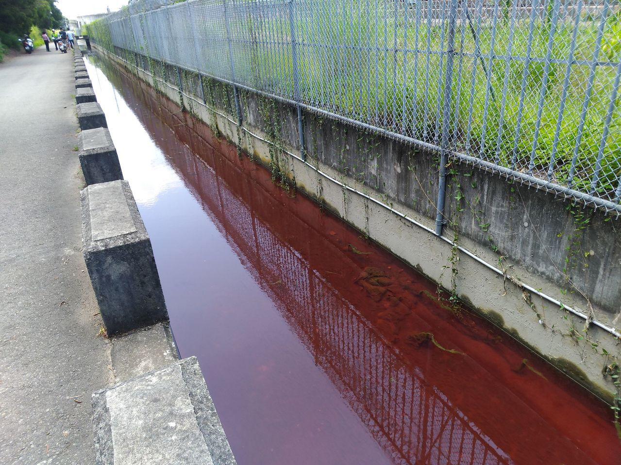 台中市外埔區桐花步道旁的水圳上游處,今天上午被民眾發現圳水被染成紅色,猶如「血流...