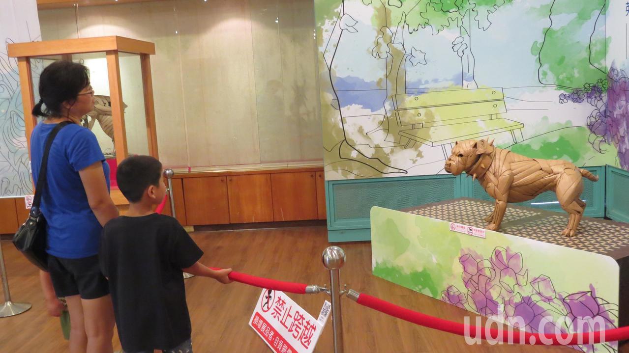 「紙板神手」鍾凱翔的「仿真」系列瓦楞紙雕創作,吸引駐足觀賞。記者范榮達/攝影