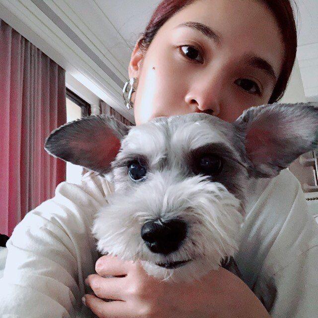 楊丞琳與愛犬Yumi。 圖/擷自楊丞琳IG