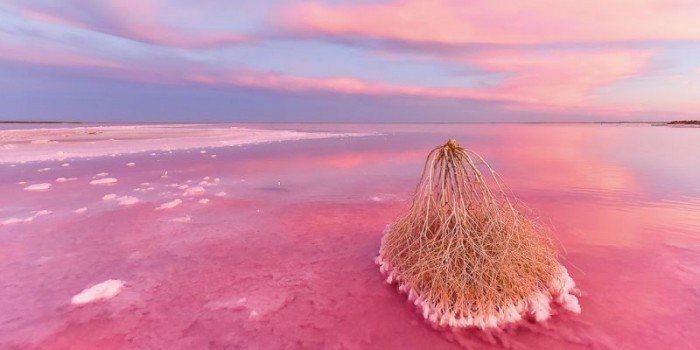澳洲 蒂勒爾鹽湖。 圖/racv.com
