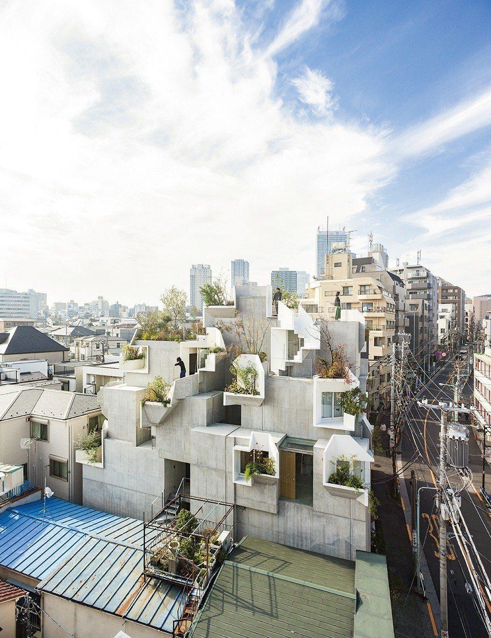 住宅設計「樹木之家」(Tree-ness House)的主人為藝廊主理人,平田晃...
