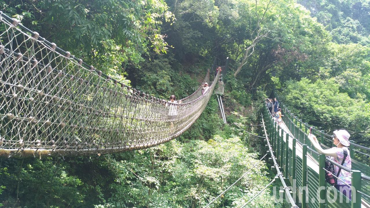 小錐麓步道可挑戰單人吊橋。記者楊德宜/攝影