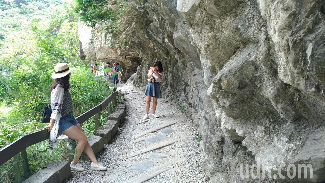砂卡礑步道一路上都很好拍,想當戶外型網美可別錯過了。記者楊德宜/攝影