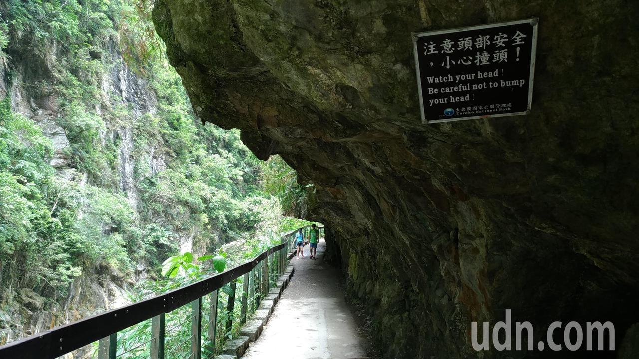 遊客行走於砂卡礑步道,一側和頭頂上方就是岩壁,而另一側則是壯麗絕美的峽谷,好山好...