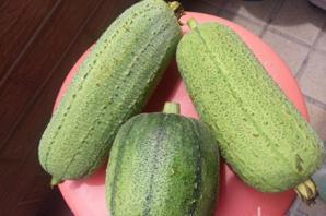 「夏天過後三分虛」秋季進補別吃肉 2種蔬菜抗秋燥