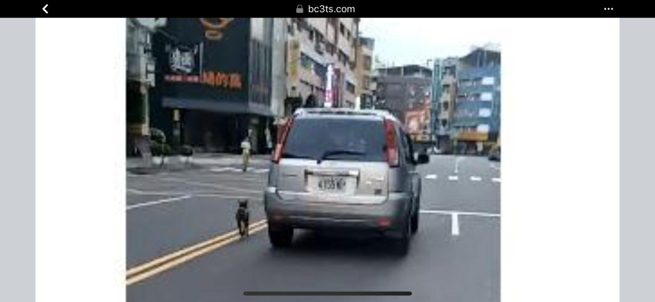 今天清晨5時多有車主在台南市東區道路上一手開車,一手牽著繩子在車外跑,引發各界關...