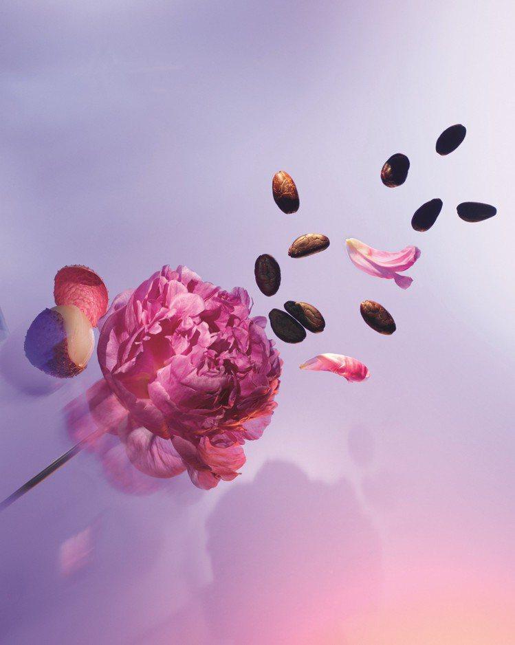 非洲可可花與牡丹是路易威登「Attrape-Reves追夢」的香氛精髓。圖/路易...