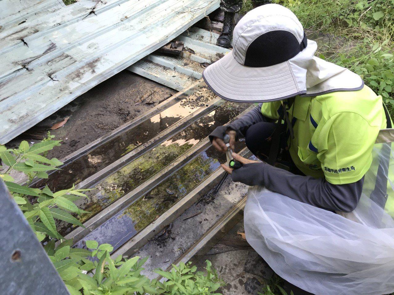 登革熱工作小組在左營區會勘,清查孳生源。圖/高雄市衛生局提供