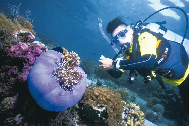 馬來西亞半島東海岸一帶,有豐富的海洋生態。 圖/馬來西亞觀光局提供