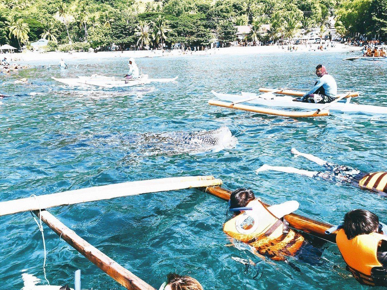 水上活動是宿霧旅遊的亮點。 圖/雄獅旅遊提供