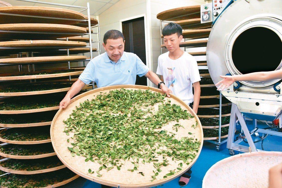 國民黨新北市長參選人侯友宜(左)昨參訪三峽谷芳茶園,體驗製茶。 記者江婉儀/拍攝