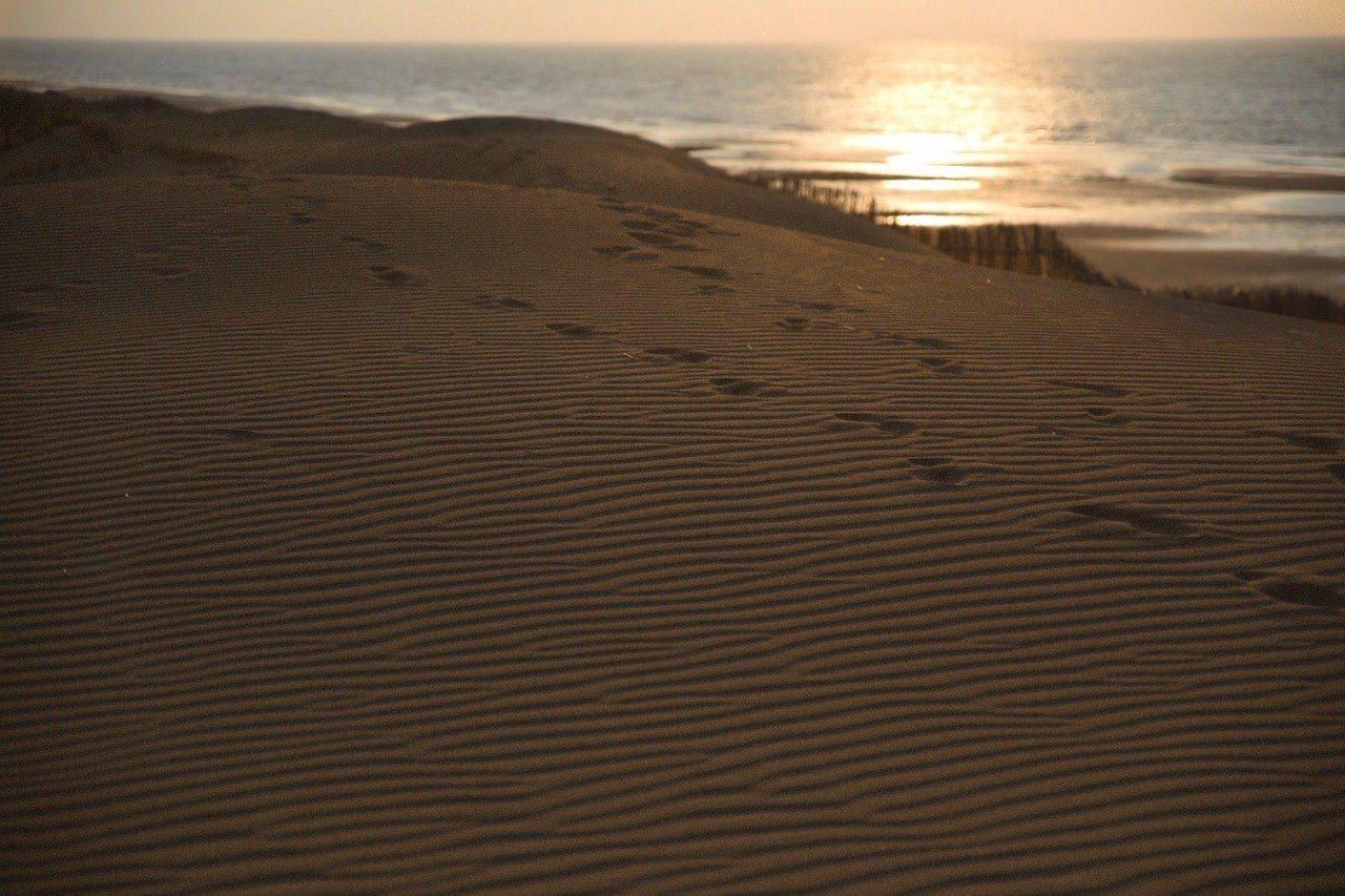 夕陽斜照配上沙灘上的足跡,美不勝收。攝影/小林賢佐 提供