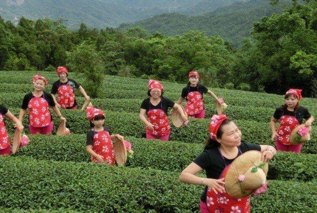 石碇樂齡中心特色—茶舞。 新北教育局/提供。