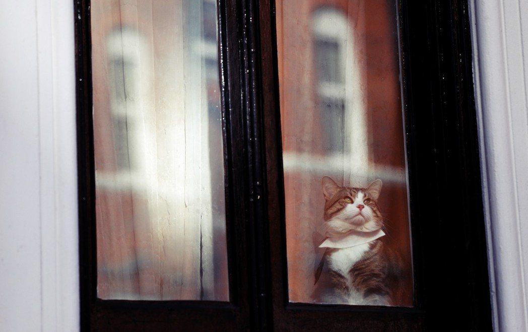 「在一屋難求的倫敦要找個好房東,真的不簡單...。」 圖/路透社