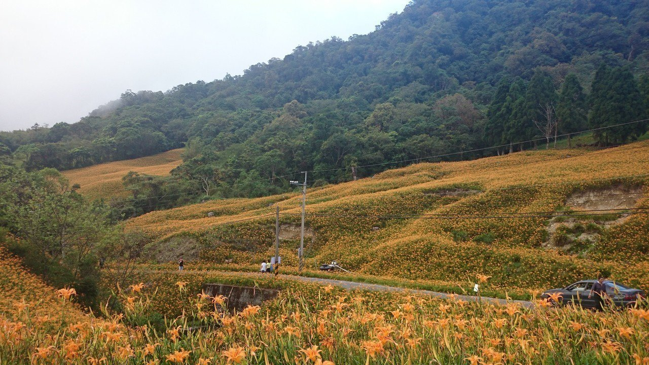 花蓮玉里鎮赤科山電桿未地下化以前,多座電桿影響遊客賞景視線。圖/民眾提供