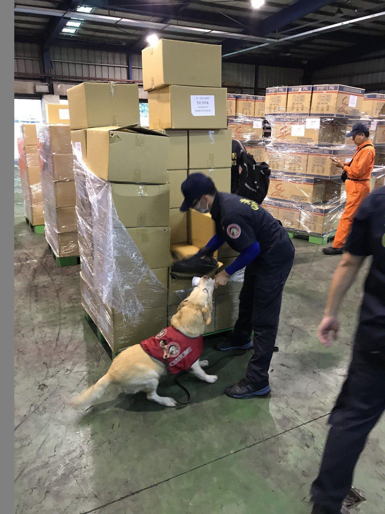 刑事局和海關聯手,在基隆港區攔截毒品貨櫃,出動緝毒犬查獲大批一粒眠毒品。圖/刑事...