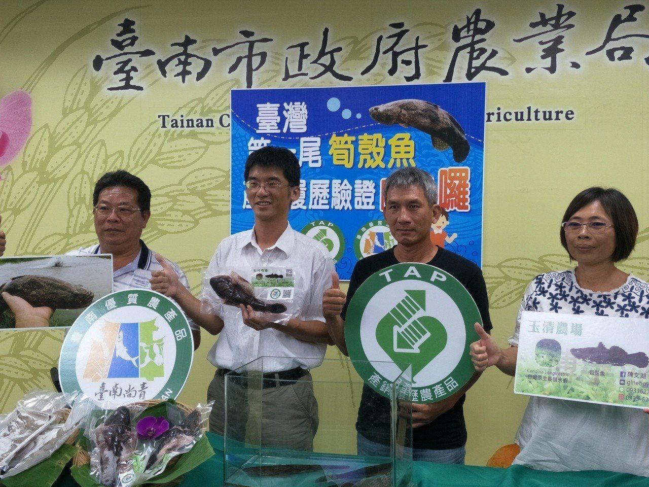 台南市筍殼魚養殖數量占全台9成,居全台之冠。記者謝進盛/攝影
