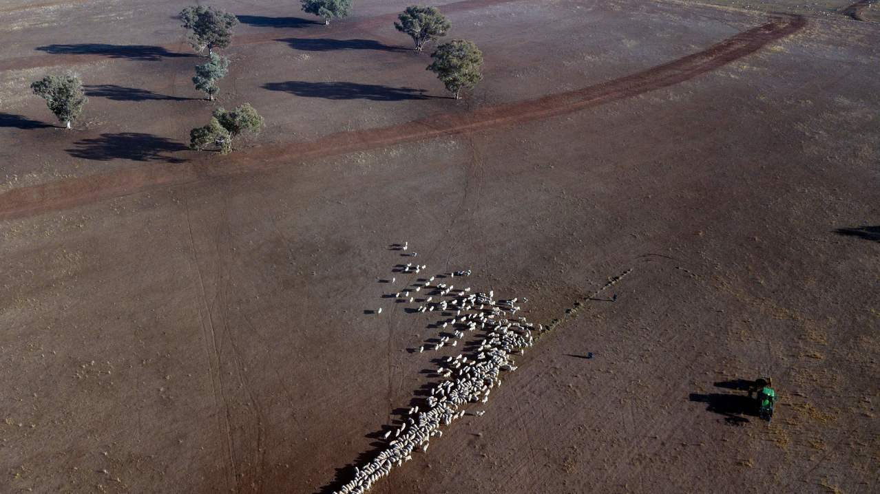 空照圖顯示,澳洲新南威爾斯省基林迪一個牧場寸草不生。法新社