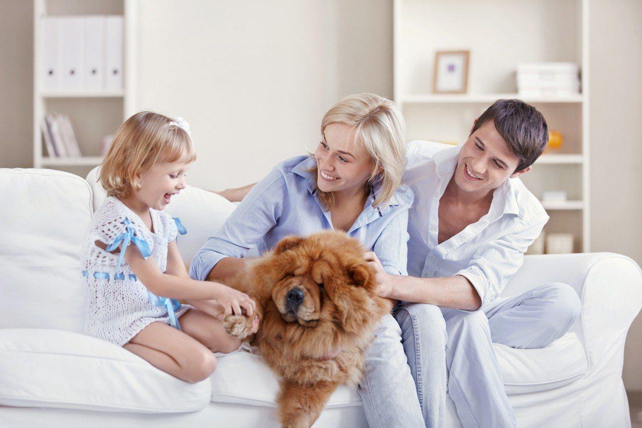 男友媽媽說「養狗不會懷孕」,無稽之談讓眾人傻眼。示意圖/ingimage